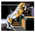 Mustang - manto 1000000129