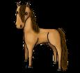 Caballo de Przewalski - manto 1000000168