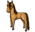 Caballo de Przewalski adulto - manto 1000000168