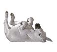 Burro gris - manto 1000000105